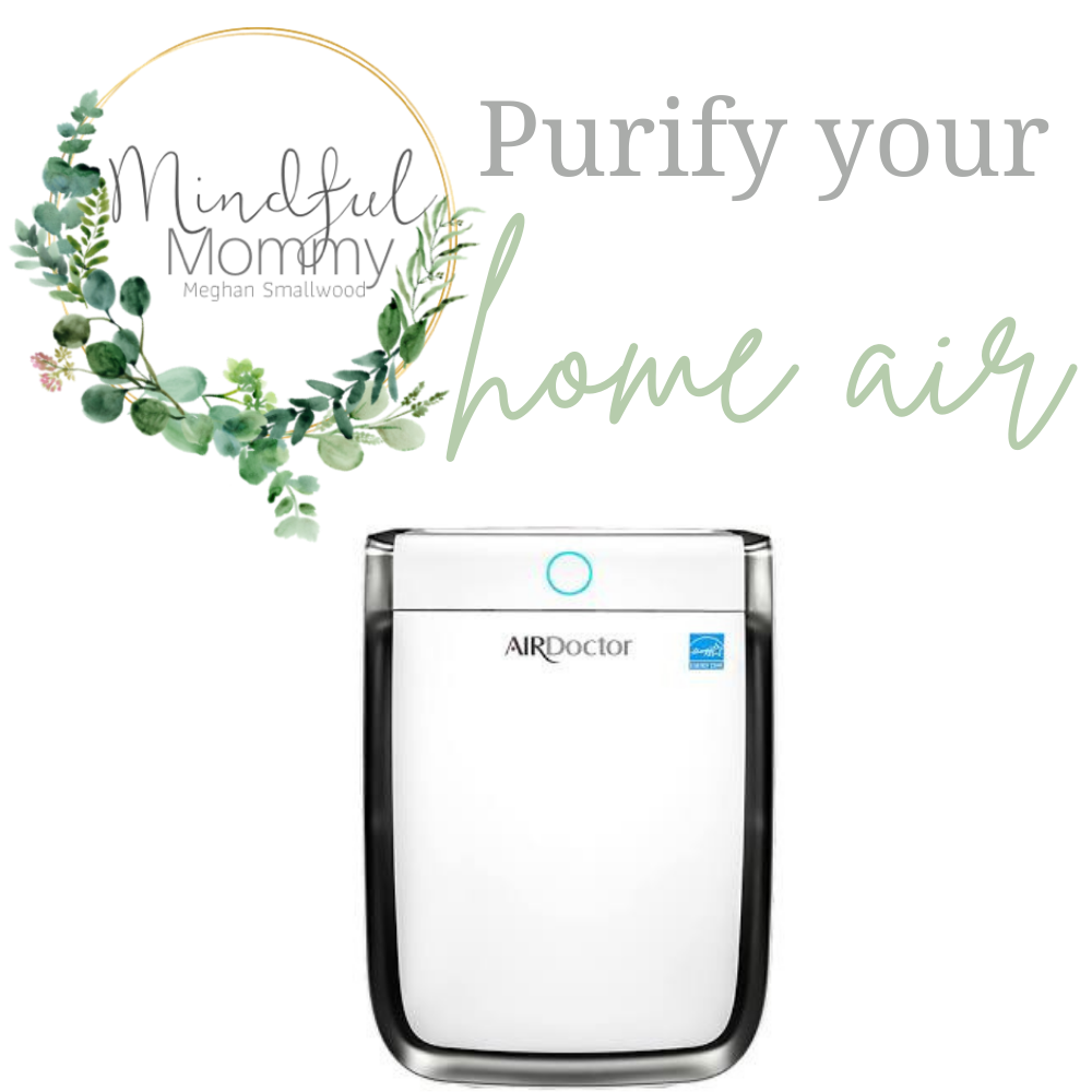 Steps to Detox your home: air purifier